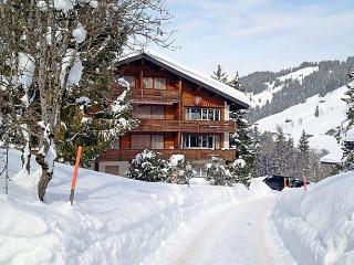 Im Zaeundli A - Habkern vacation rentals