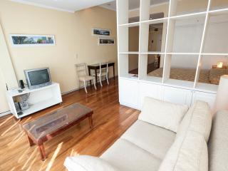 NICE APARTEMENT IN RECOLETA - Buenos Aires vacation rentals