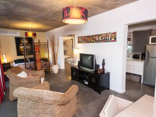Premium Asian Loft in Hip Neighborhood - Buenos Aires vacation rentals