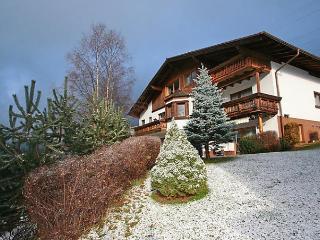 Schranz - Pettneu am Arlberg vacation rentals