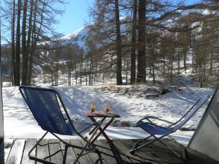 Foux D'Allos Appt 6 pers, terrasse jardin, 100m/pistes de ski, belle vue - Allos vacation rentals