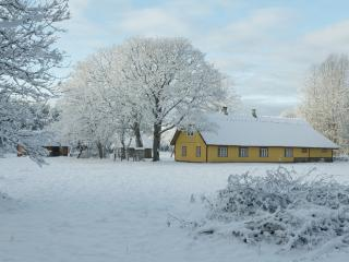 Comfortable Farmhouse Barn with Internet Access and Porch - Kihelkonna vacation rentals