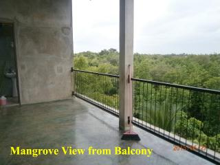 Cozy 1 bedroom Apartment in Negombo with Internet Access - Negombo vacation rentals