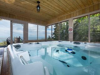 Nice Chalet with Internet Access and Dishwasher - Saint-Irenee vacation rentals