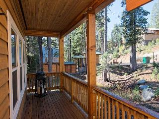 Blissful Seclusion at a 2BR Soda Springs Cottage – Views of Castle Peak - Soda Springs vacation rentals