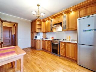 Nice Condo with Internet Access and A/C - Smolensk vacation rentals