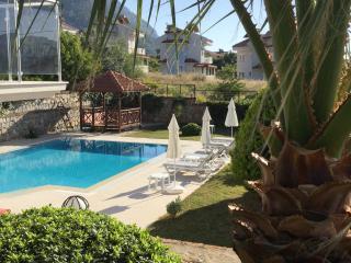 Primrose Villa - Ovacik vacation rentals