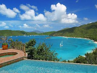 Gorgeous Villa with Deck and Internet Access - Virgin Islands National Park vacation rentals