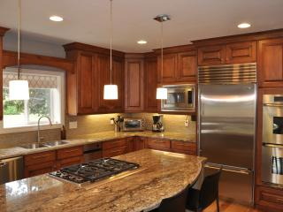 Luxury Home in Downtown Salt Lake City - Salt Lake City vacation rentals