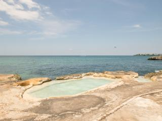 Sting Ray Beach Studio - Negril vacation rentals
