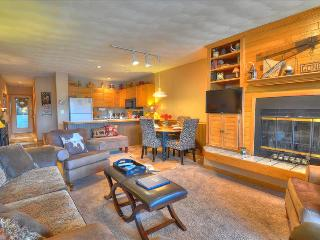 EAST BAY 5: Attractive 1/1, Steps From Fishing, Rec Path on Lake Dillon, Amazing Views - Dillon vacation rentals