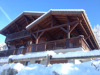 Beautiful and luxurious chalet with amazing views - Chatel vacation rentals