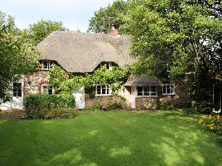 Charming Cottage with Internet Access and Television - Petersfield vacation rentals