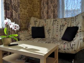 1 bedroom Apartment with Internet Access in Petropavlovsk-Kamchatskiy - Petropavlovsk-Kamchatskiy vacation rentals