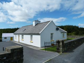 4 bedroom Cottage with Microwave in Kilshanny - Kilshanny vacation rentals