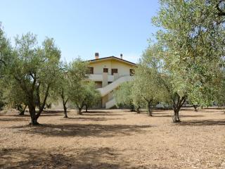 La casa degli Ulivi a due passi dal mare - Cabras vacation rentals