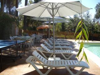 Beautiful holiday villa with saline pool - Sils vacation rentals