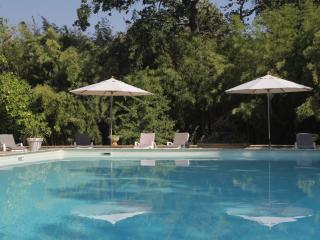 GÎTE dans superbe Mas Provençal - 12pers - Entraigues-sur-la-Sorgue vacation rentals