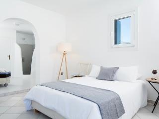Deluxe Suite Mykonos - Luxury Suite with Pool - Mykonos vacation rentals