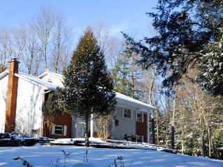 GRUNDEN. cottage on Minden Lake - Minden vacation rentals