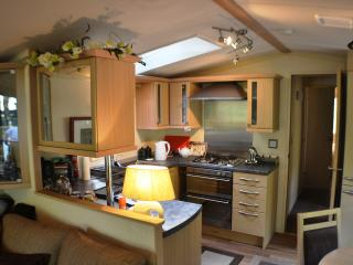Aberdunant Luxury Caravan with views of the Meadow - Prenteg vacation rentals