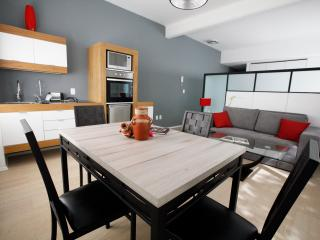 1 bedroom Apartment with Washing Machine in Mexico City - Mexico City vacation rentals