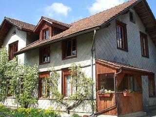 Drossli - Fischenthal vacation rentals