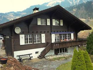 Chalet am Schärm - Lauterbrunnen vacation rentals