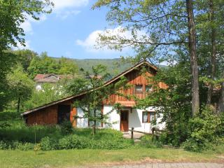 Cosy Swiss chalet - Moutier vacation rentals