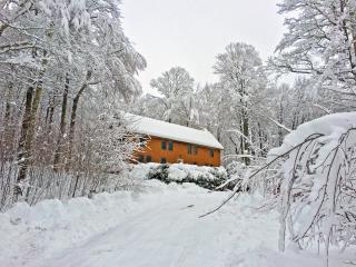 The Cabin at Killington: Whole Home - Killington vacation rentals