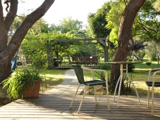 Perfect spacious house,best location near Tel Aviv - Herzlia vacation rentals