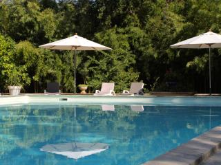 Nice Gite with Internet Access and A/C - Entraigues-sur-la-Sorgue vacation rentals