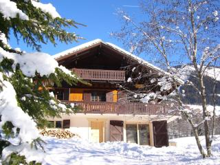 Self catered chalet in Chatel, sleeps 12/13 - Chatel vacation rentals