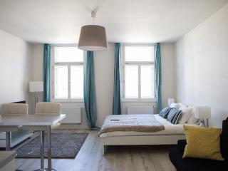 Luxury Renovated Flat Prague City Center - Prague vacation rentals