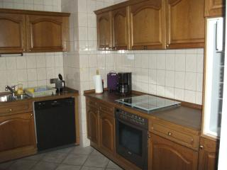 Cozy Apartment with Dishwasher and Outdoor Dining Area - Schoenenberg-Kuebelberg vacation rentals