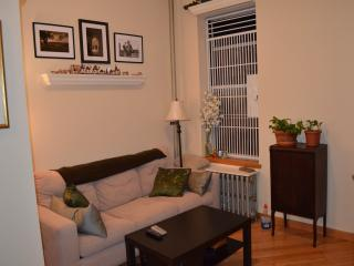 Charming & Sunny 1-BR apt near Astor Place! - New York City vacation rentals