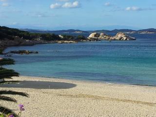 Villa La Silvaredda - Baia Sardinia vacation rentals