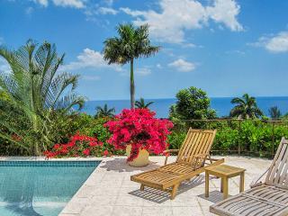 Sugar Hill at Tryall Club, Sleeps 12 - Montego Bay vacation rentals