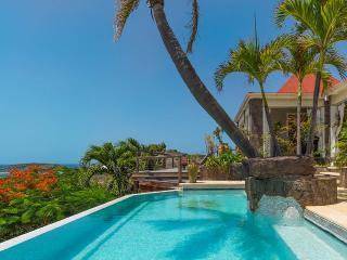 Cozy Villa with Television and DVD Player - Petit Cul de Sac vacation rentals