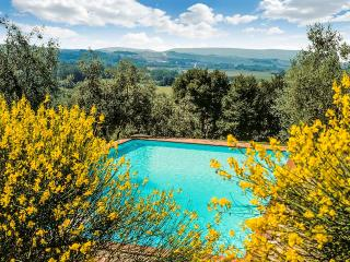 Charming Monteaperti Villa rental with Hot Tub - Monteaperti vacation rentals