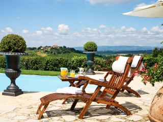 Beautiful Villa with Television and DVD Player - Chianti vacation rentals
