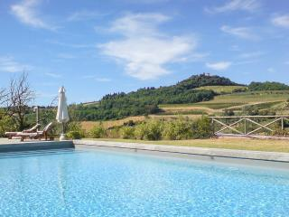 Cozy Villa with Fireplace and Patio - Chianti vacation rentals