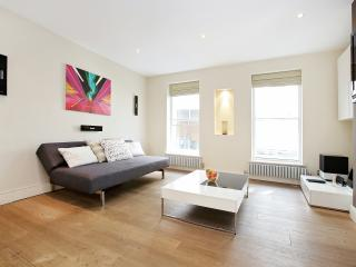 81. MODERN 2BR FLAT - PICCADILLY CIRCUS - London vacation rentals