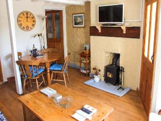 BRONTE KINGFISHER COTTAGE, hot tub, pool table, woodburner, garden, in Lea, Ref. 26231 - Lea vacation rentals