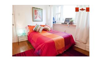 COZY STUDIO + TERRACE ON PLATEAU ( APT 1) - Montreal vacation rentals