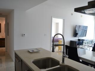 Viceroy Brickell Miami Florida - Brickell vacation rentals