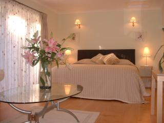 Luxury Serviced Apartment within stunning gardens - Binfield vacation rentals