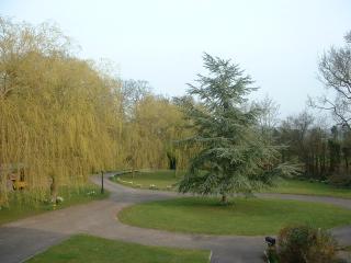 Luxury Serviced Apartment within stunning gardens - Binfield vacation rentals
