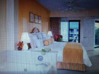 1300ft2 - Marriott Barony 2 bdr sleeps 8 - Port Royal vacation rentals