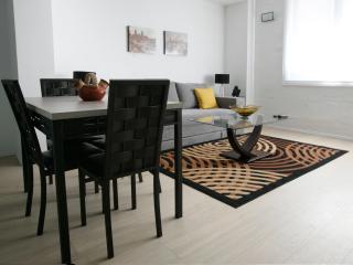 Comfortable 1 bedroom Condo in Mexico City - Mexico City vacation rentals